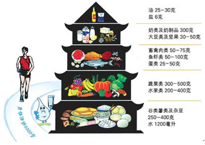 健康饮食互动